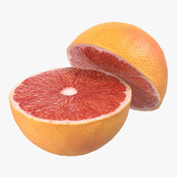 3d model grapefruit cross section 2