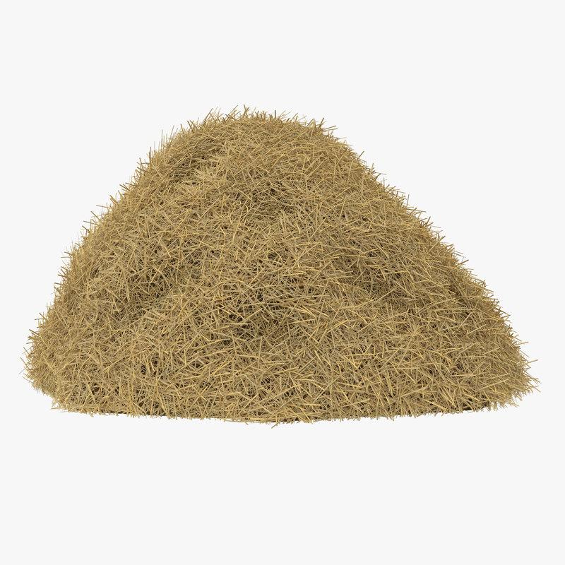 3d model of Hay Pile 00.jpg