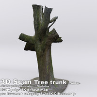 obj scan tree trunk