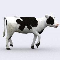 calf animations 3ds