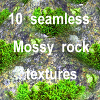 Mossy Rock Collection 9