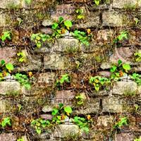 Stone wall 78