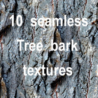 Tree Bark Collection 8