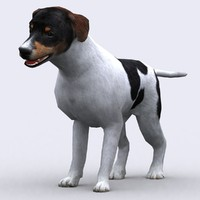 3ds max - dog