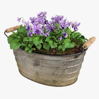 violet flowers 3d max