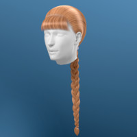 hair braid obj