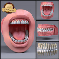 3d model mouth realistic