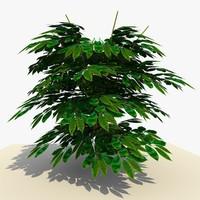 plant bush 3d 3ds
