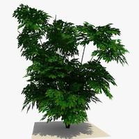 3dsmax plant bush