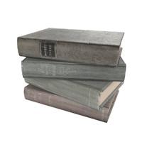 3dsmax book