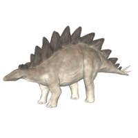 3d stegosaurus model