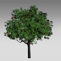 apple tree obj