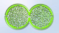 maze circle 3ds