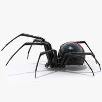 3d model of black widow spider