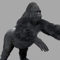 3d ma gorilla rigging shave