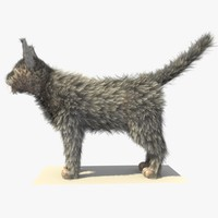 3d grey cat fur