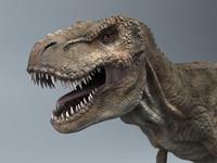3d trex - realistic model