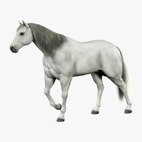 maya horse white fur animation