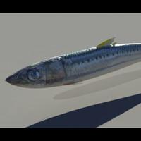 3d sardine fish model