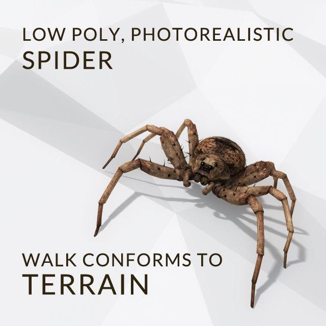 Spider_A.jpg
