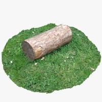 Tree Log 2