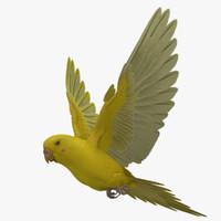 Melopsittacus Undulatus 'Budgerigar Bright Yellow'