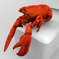 3d model cooked lobster