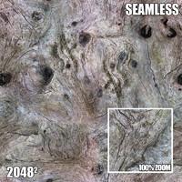 2048 Seamless Bark Texture XI