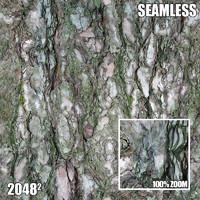 2048 Seamless Bark Texture II