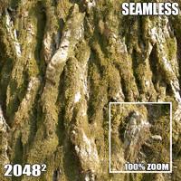 2048 Seamless Bark Texture III