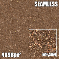 4096 Seamless Texture Dirt I