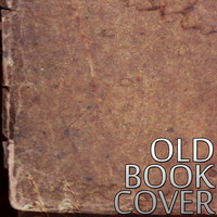 Old Steampunk Book Cover Texture V