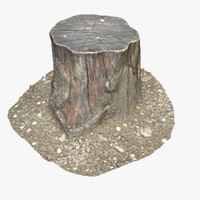 tree stump 16 3d model