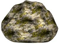 Mossy rock 110