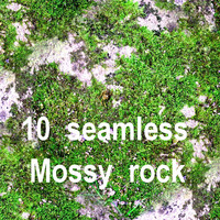 Mossy Rock Collection 11