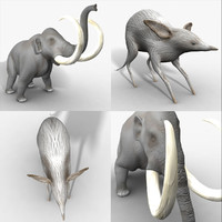 rigged animals 3d model