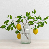 3d lemons branch model