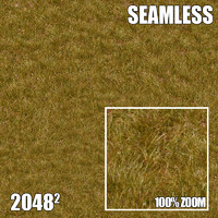 2048 Seamless Dirt/Grass