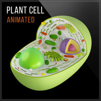 3ds plant cell