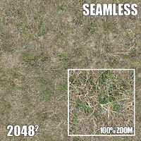 2048 Seamless Dirt/Grass 10