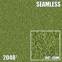 2048 Seamless Dirt/Grass 11