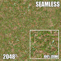 2048 Seamless Dirt/Grass 13