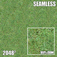 2048 Seamless Dirt/Grass 14