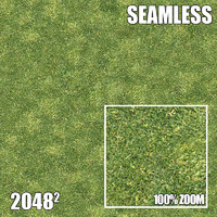 2048 Seamless Dirt/Grass 15