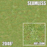 2048 Seamless Dirt/Grass 20