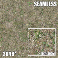 2048 Seamless Dirt/Grass 22