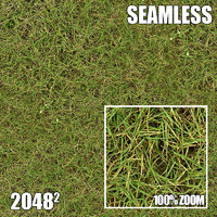 2048 Seamless Dirt/Grass 26