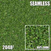 2048 Seamless Dirt/Grass 28
