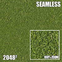 2048 Seamless Dirt/Grass 30