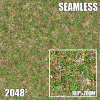 2048 Seamless Dirt/Grass 32